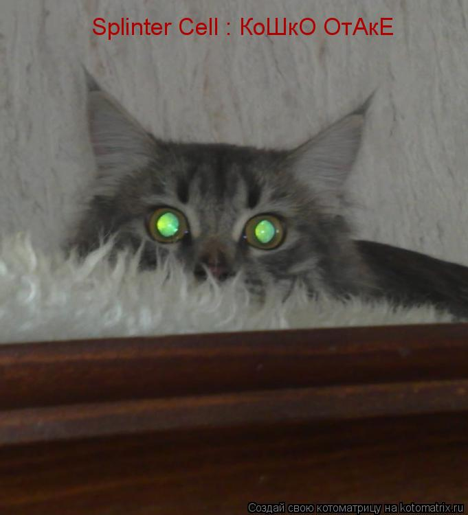 Котоматрица: Splinter Cell : КоШкО ОтАкЕ