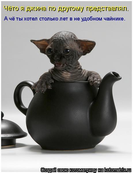 Котоматрица: Чёто я джина по другому представлял. А чё ты хотел столько лет в не удобном чайнике.