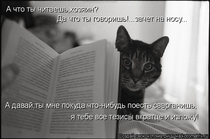 Котоматрица: А что ты читаешь,хозяин? Да что ты говоришь!...зачет на носу... А давай,ты мне покуда что-нибудь поесть сварганишь,  я тебе все тезисы вкратце и