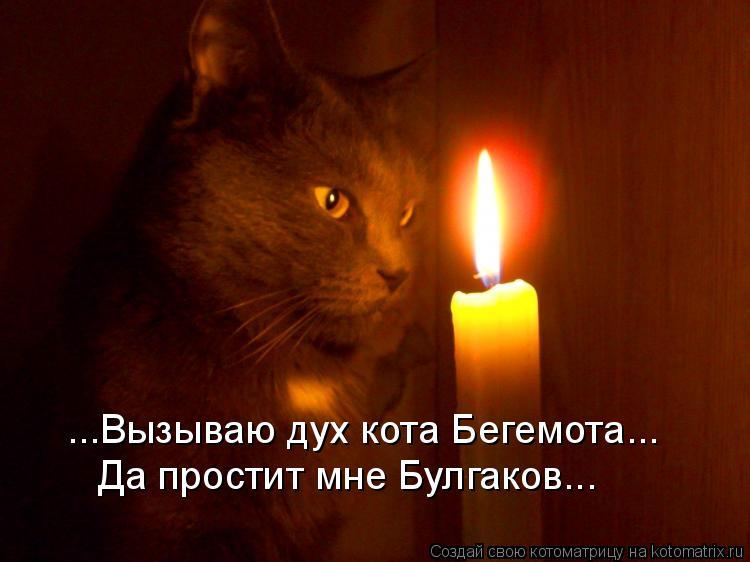 Котоматрица: ...Вызываю дух кота Бегемота... Да простит мне Булгаков...