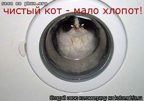 Котоматрица: чистый кот - мало хлопот!