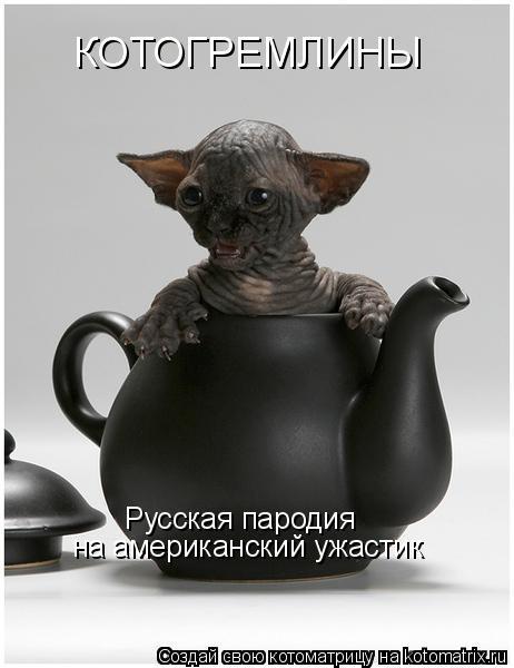 Котоматрица: КОТОГРЕМЛИНЫ Русская пародия  на американский ужастик