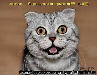 Котоматрица: ээээээээ.......Я правда самый серьёзный!!!!!!!!!))))))))