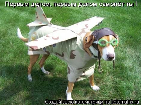Котоматрица: Первым делом, первым делом самолёт ты !
