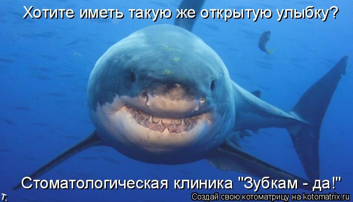 """Котоматрица: Хотите иметь такую же открытую улыбку? Стоматологическая клиника """"Зубкам - да!"""""""