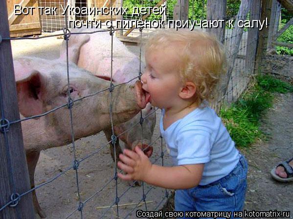 Котоматрица: Вот так Украинских детей,  почти с пилёнок приучают к салу!