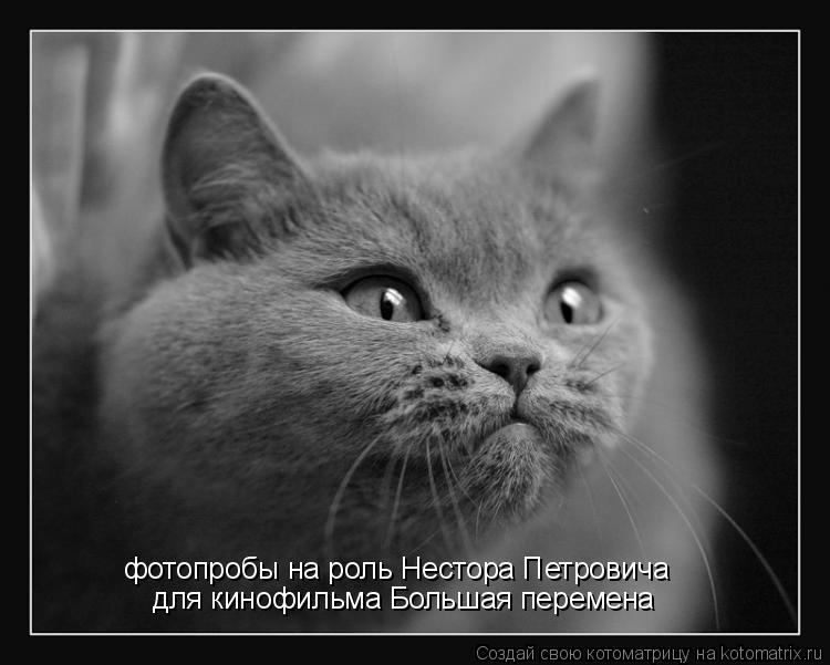 Котоматрица: фотопробы на роль Нестора Петровича для кинофильма Большая перемена