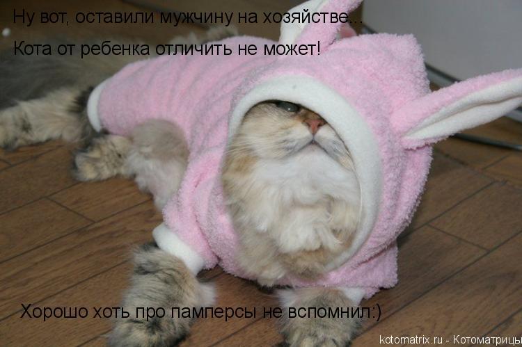 Котоматрица: Ну вот, оставили мужчину на хозяйстве... Хорошо хоть про памперсы не вспомнил:) Кота от ребенка отличить не может!