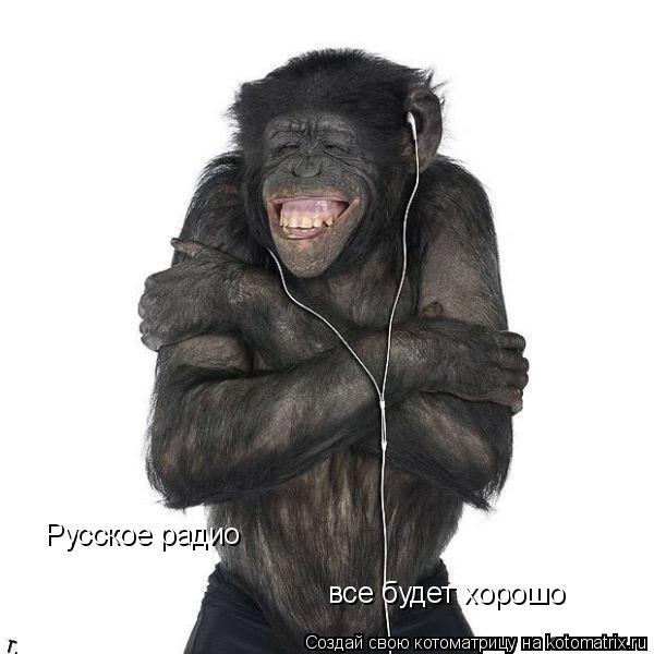 Котоматрица: Русское радио все будет хорошо