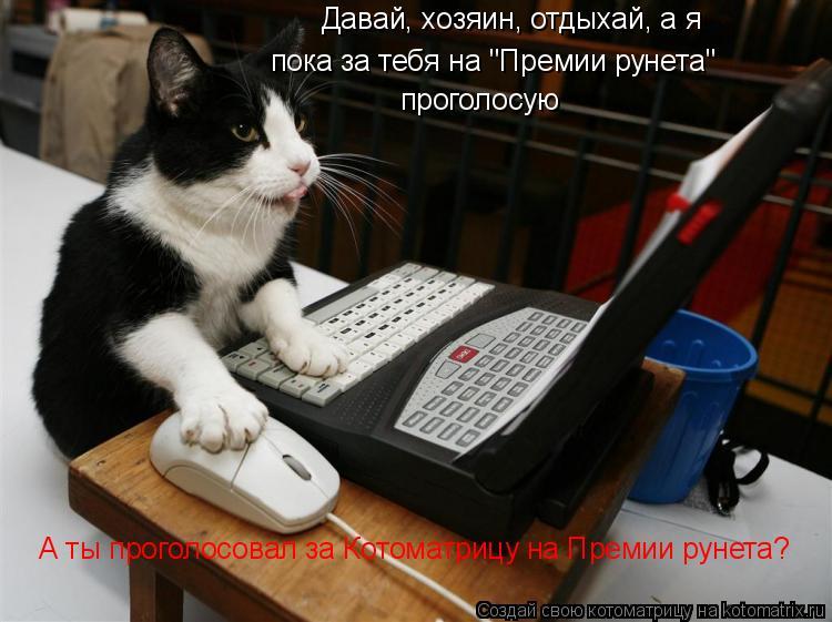 """Котоматрица: Давай, хозяин, отдыхай, а я пока за тебя на """"Премии рунета"""" проголосую А ты проголосовал за Котоматрицу на Премии рунета?"""