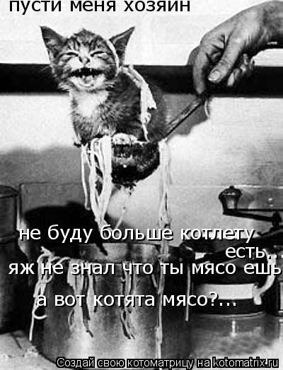 Котоматрица: пусти меня хозяин  не буду больше котлету  есть...  яж не знал что ты мясо ешь! а вот котята мясо?...