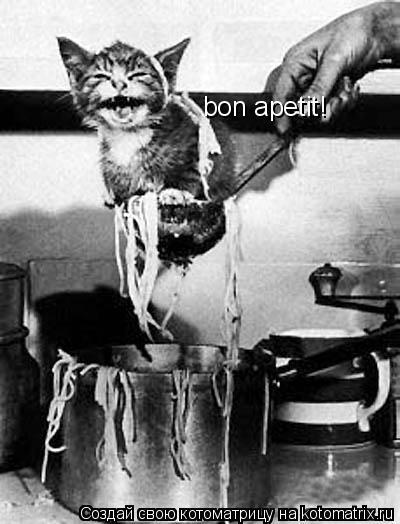 Котоматрица: bon apetit!