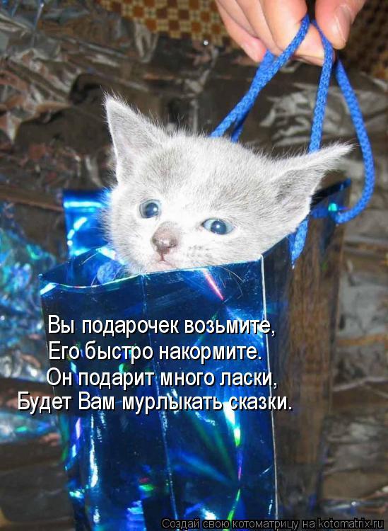 Котоматрица: Вы подарочек возьмите, Его быстро накормите. Он подарит много ласки, Будет Вам мурлыкать сказки.