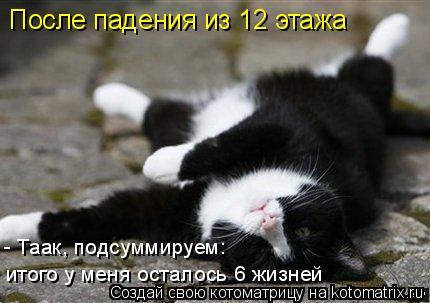 Котоматрица: После падения из 12 этажа - Таак, подсуммируем:  итого у меня осталось 6 жизней