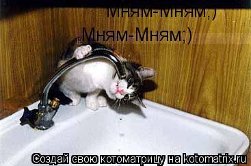 Котоматрица: Мням-Мням;) Мням-Мням;)