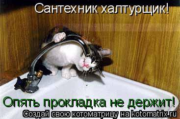 Котоматрица: Сантехник халтурщик!  Опять прокладка не держит!
