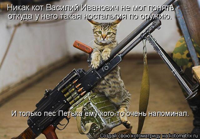 Котоматрица: Никак кот Василий Иванович не мог понять откуда у него такая ностальгия по оружию. И только пес Петька ему кого-то очень напоминал.
