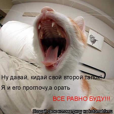 Котоматрица: Ну давай, кидай свой второй тапок! Я и его проглочу,а орать ВСЕ РАВНО БУДУ!!!