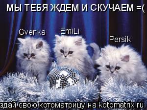 Котоматрица: МЫ ТЕБЯ ЖДЕМ И СКУЧАЕМ =( Gvenka EmiLi Persik