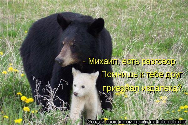 Котоматрица: - Михаил, есть разговор. Помнишь к тебе друг  приезжал издалека?..