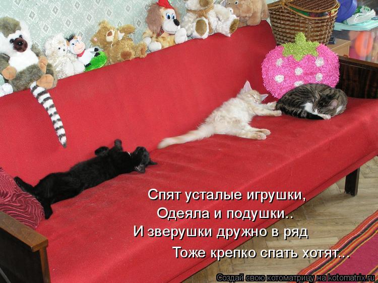Котоматрица: Спят усталые игрушки, Одеяла и подушки.. И зверушки дружно в ряд Тоже крепко спать хотят...