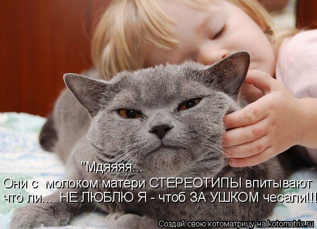 """Котоматрица: """"Мдяяяя...  Они с  молоком матери СТЕРЕОТИПЫ впитывают что ли...  НЕ ЛЮБЛЮ Я - чтоб ЗА УШКОМ чесали!!!"""