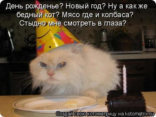 Котоматрица: День рожденье? Новый год? Ну а как же бедный кот? Мясо где и колбаса? Стыдно мне смотреть в глаза?
