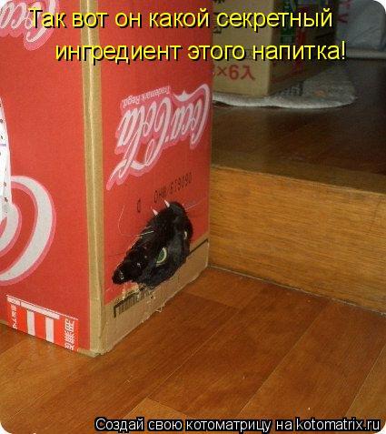 Котоматрица: Так вот он какой секретный  ингредиент этого напитка!