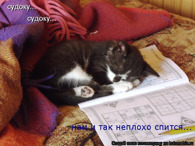Котоматрица: судоку...  судоку...  нам и так неплохо спится...