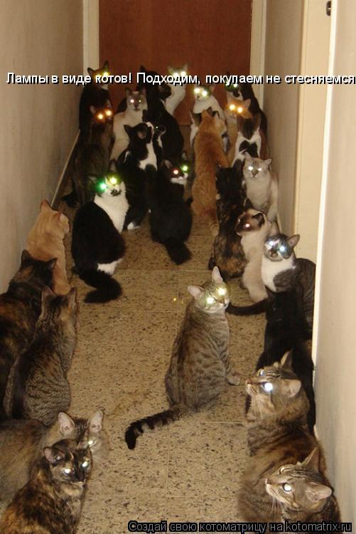 Котоматрица: Лампы в виде котов! Подходим, покупаем не стесняемся!