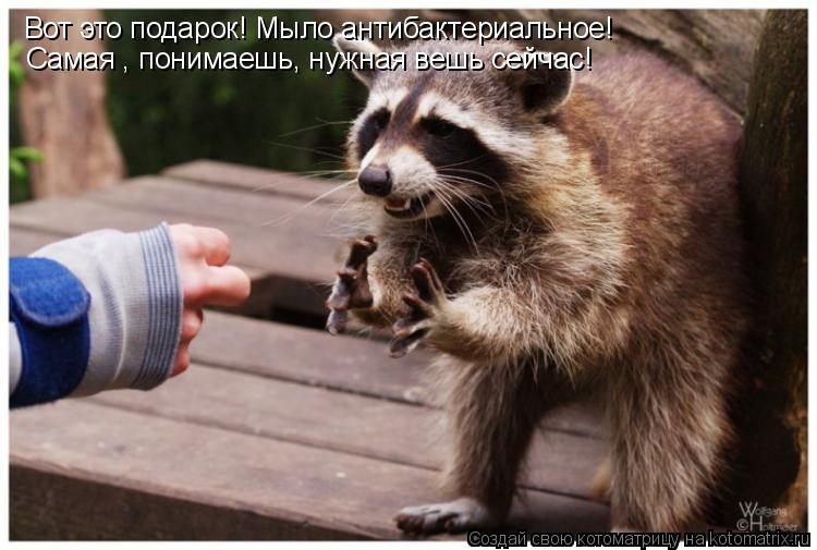 Котоматрица: Вот это подарок! Мыло антибактериальное! Самая , понимаешь, нужная вешь сейчас!