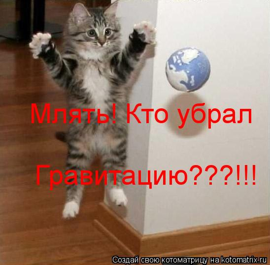 Котоматрица: Млять! Кто убрал  Гравитацию???!!!