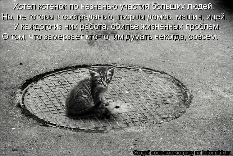 Котоматрица: Хотел котенок по незнанью участия больших людей.  Но, не готовы к состраданью, творцы домов, машин, идей.  У каждого из них работа, обилье жизн