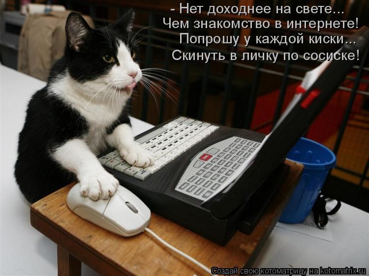 Котоматрица: - Нет доходнее на свете... Чем знакомство в интернете! Попрошу у каждой киски... Скинуть в личку по сосиске!