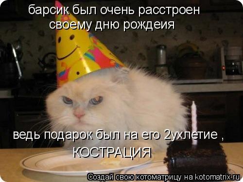 Котоматрица: барсик был очень расстроен   своему дню рождеия ведь подарок был на его 2ухлетие , КОСТРАЦИЯ