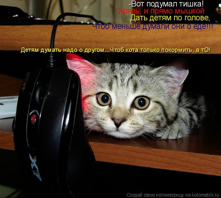 Котоматрица: -Вот подумал тишка! Хрязь, и прямо мышкой Дать детям по голове,  Чтоб меньше думали они о еде!!! Детям думать надо о другом...Чтоб кота только по