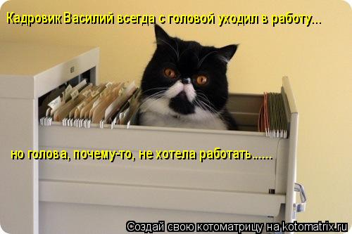 Котоматрица: Кадровик Василий всегда с головой уходил в работу... но голова, почему-то, не хотела работать......