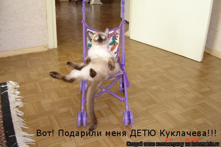 Котоматрица: Вот! Подарили меня ДЕТЮ Куклачева!!!