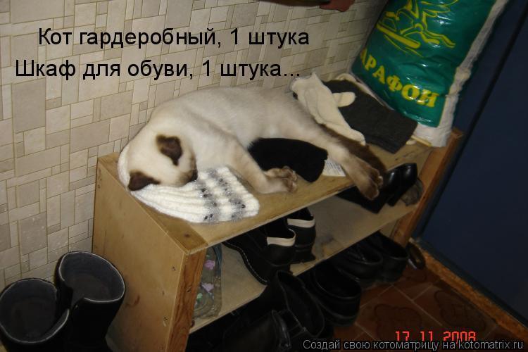 Котоматрица: Кот гардеробный, 1 штука Шкаф для обуви, 1 штука...