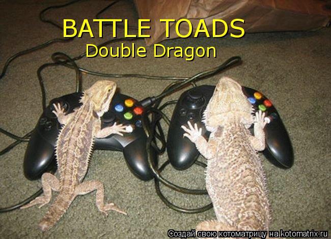 Котоматрица: BATTLE TOADS Double Dragon