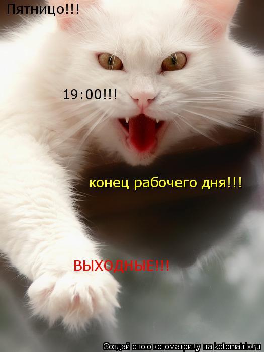 Котоматрица: Пятницо!!! 19:00!!! конец рабочего дня!!! ВЫХОДНЫЕ!!!