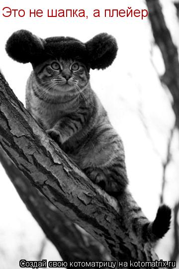 Котоматрица: Матроскин почему в шапке? Уши мёрзнут и хвост отваливается Это не шапка, а плейер