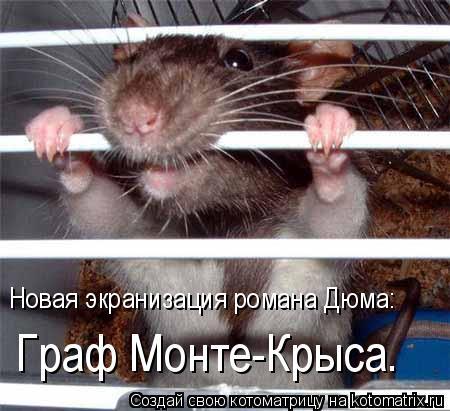 Котоматрица: Граф Монте-Крыса.  Новая экранизация романа Дюма: