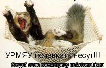 Котоматрица: УРМЯУ почавкать несут!!!