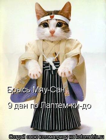 Котоматрица: Брысь Мяу-Сан 9 дан по Лаптем-ки-до