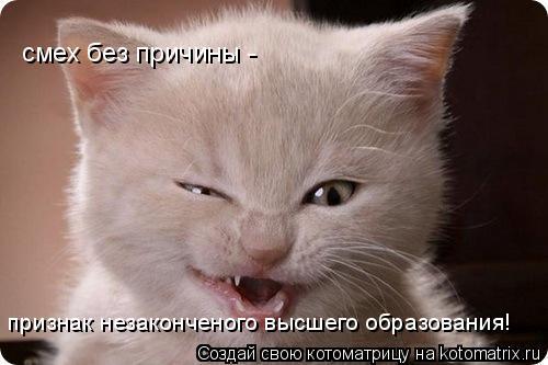 Котоматрица: смех без причины - признак незаконченого высшего образования!