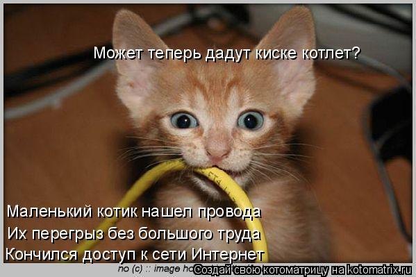 Котоматрица: Маленький котик нашел провода Их перегрыз без большого труда Кончился доступ к сети Интернет Может теперь дадут киске котлет?