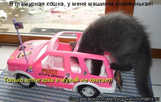 Котоматрица: Только аллигарха в мужья не хватает! Я гламурная кошка, у меня машинка розовенькая!