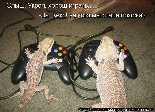 Котоматрица: -Слыш, Укроп, хорош играть.... -Да, Кекс! на кого мы стали похожи?