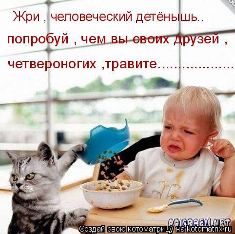 Котоматрица: Жри , человеческий детёнышь.. попробуй , чем вы своих друзей , четвероногих ,травите.......................